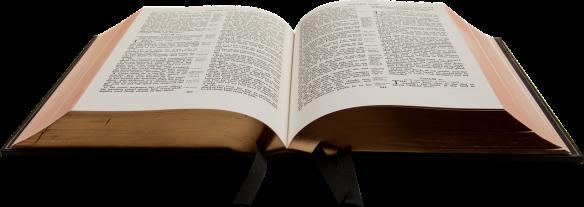 Santa Biblia