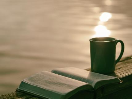 Plan de lectura de la BibliagaD.